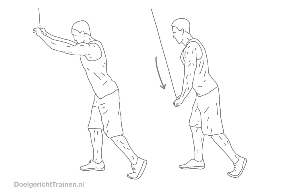 Fitness oefeningen rug - pulldown gestrekte armen - afbeelding