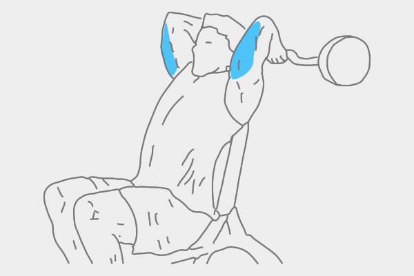 Oefeningen triceps banner