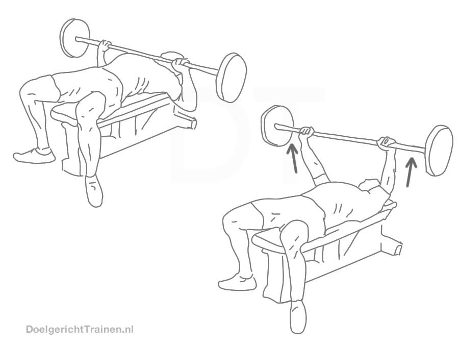 Fitness oefeningen borst - bankdrukken - afbeelding