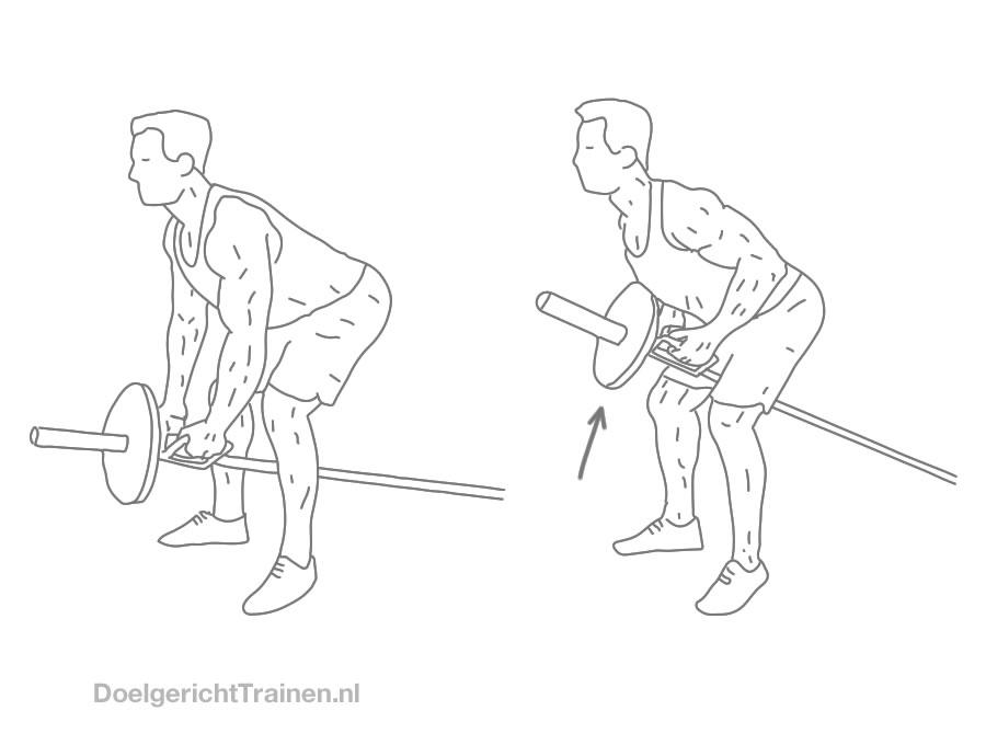 Fitness oefeningen rug - T-bar roeien - afbeelding