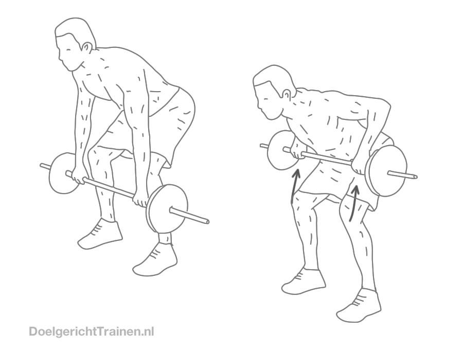 Fitness oefeningen rug - halter roeien neerwaardse greep - afbeelding