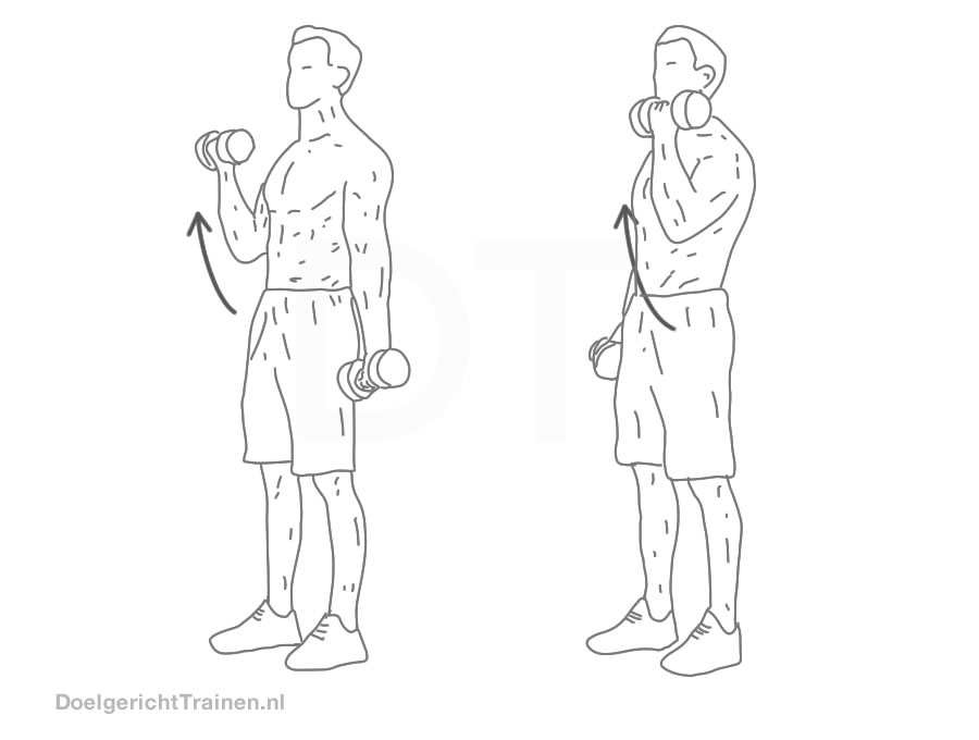 oefeningen lichaam