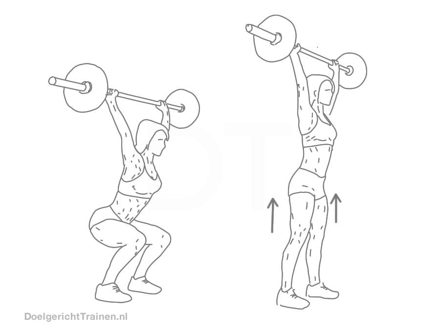 Biceps Oefeningen