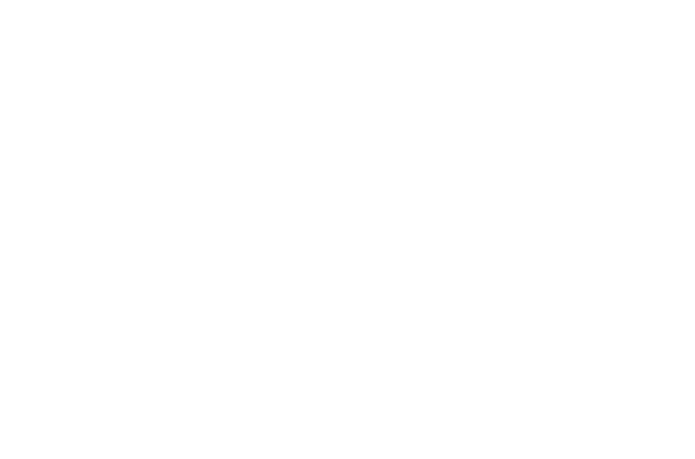 FIRST STEPS TO FIT