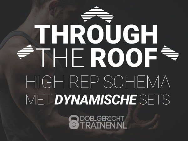 Through the Roof – Fitness Schema met dynamische sets